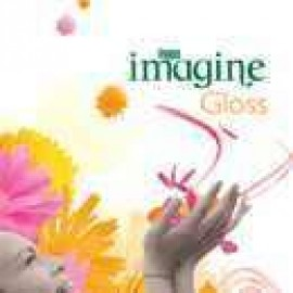 Inapa Imagine Gloss [PEFC] - PB
