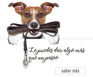 """BASES DE LA PROMOCIÓN """"SI QUIERES A TU MASCOTA…"""""""