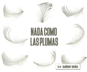 """BASES DE LA PROMOCIÓN """"PARA EL FRÍO… NADA COMO LAS PLUMAS"""""""