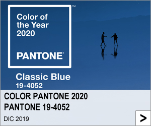 COLOR PANTONE 2020 - Pantone 19-4052